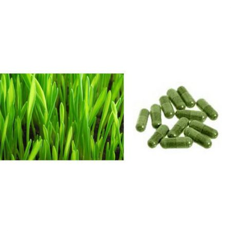 Barely Grass Capsule