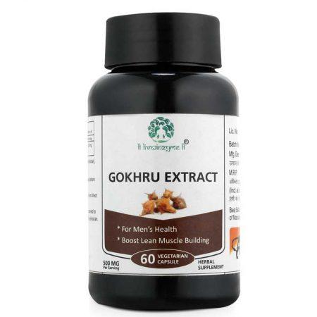 Gokhru Extract
